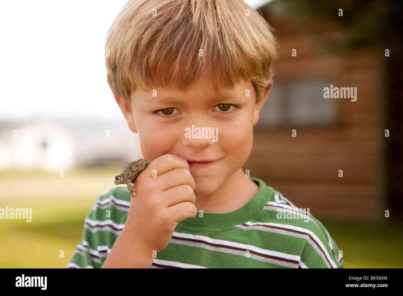 Boy with frog in hand - Stock Image