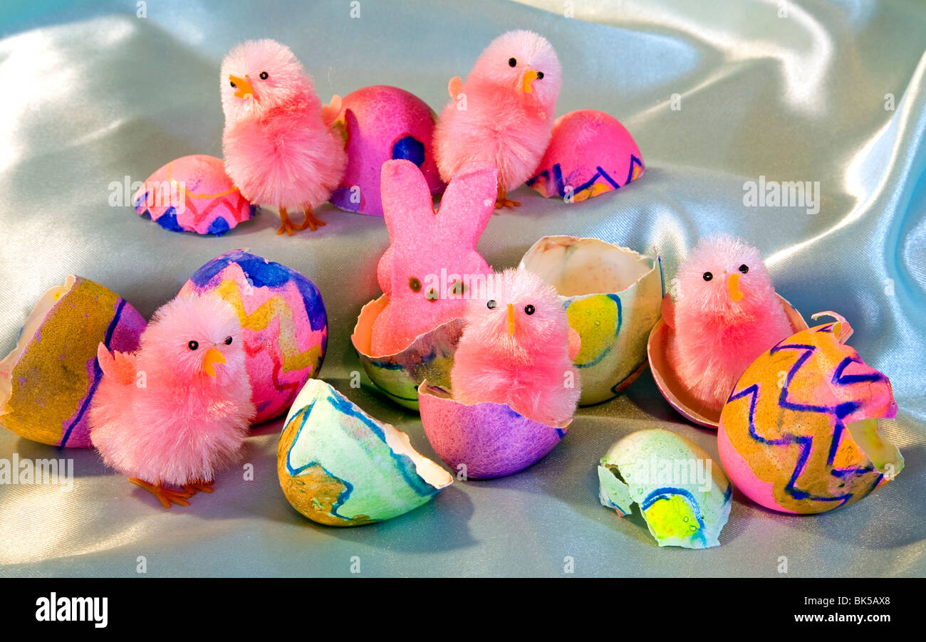 Easter Bunny Chick Basket Egg Eggs Hatch Stock Photo 29007168