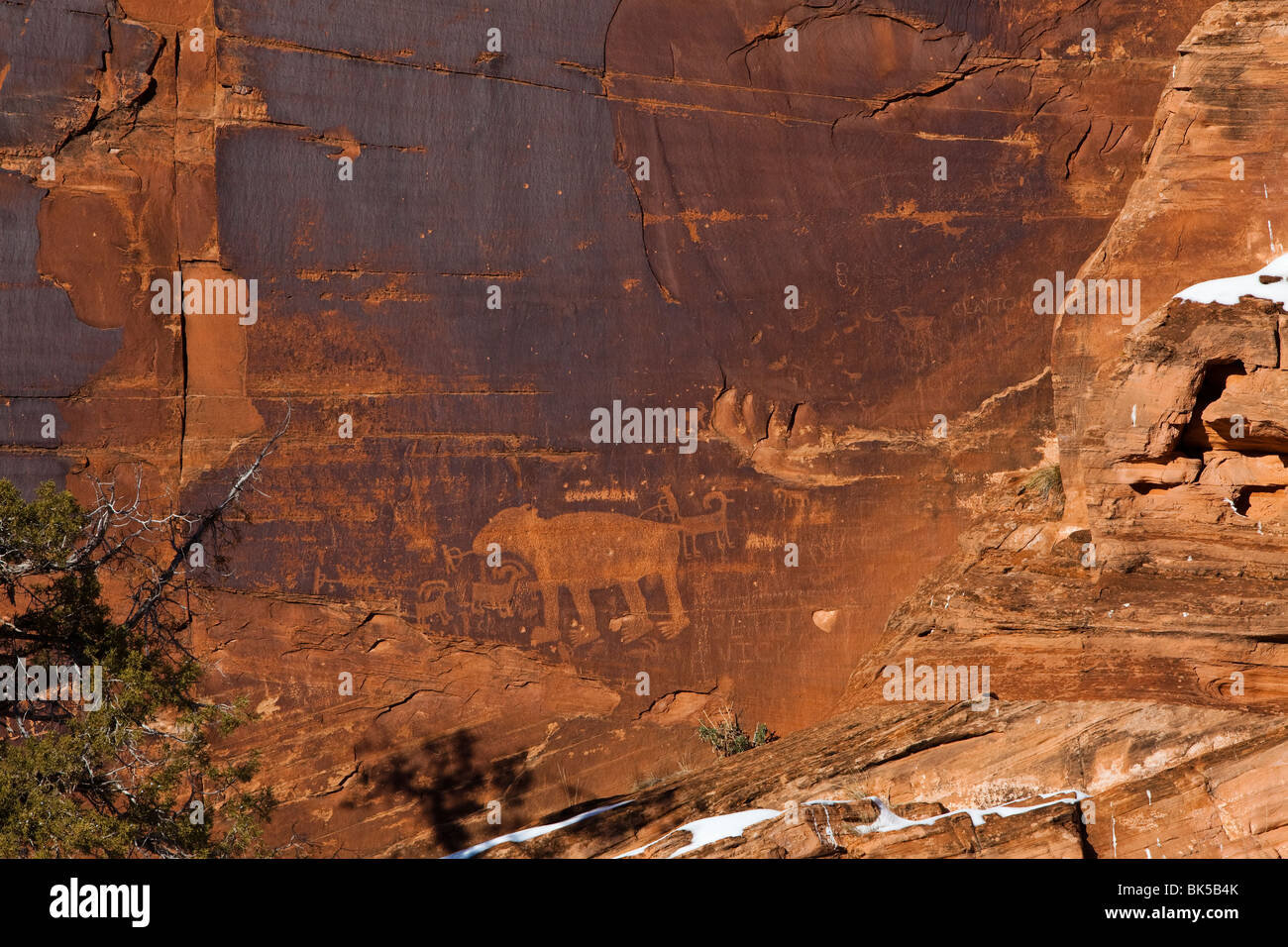 Anasazi Petroglyphs, Canyonlands National Park, Utah, USA - Stock Image