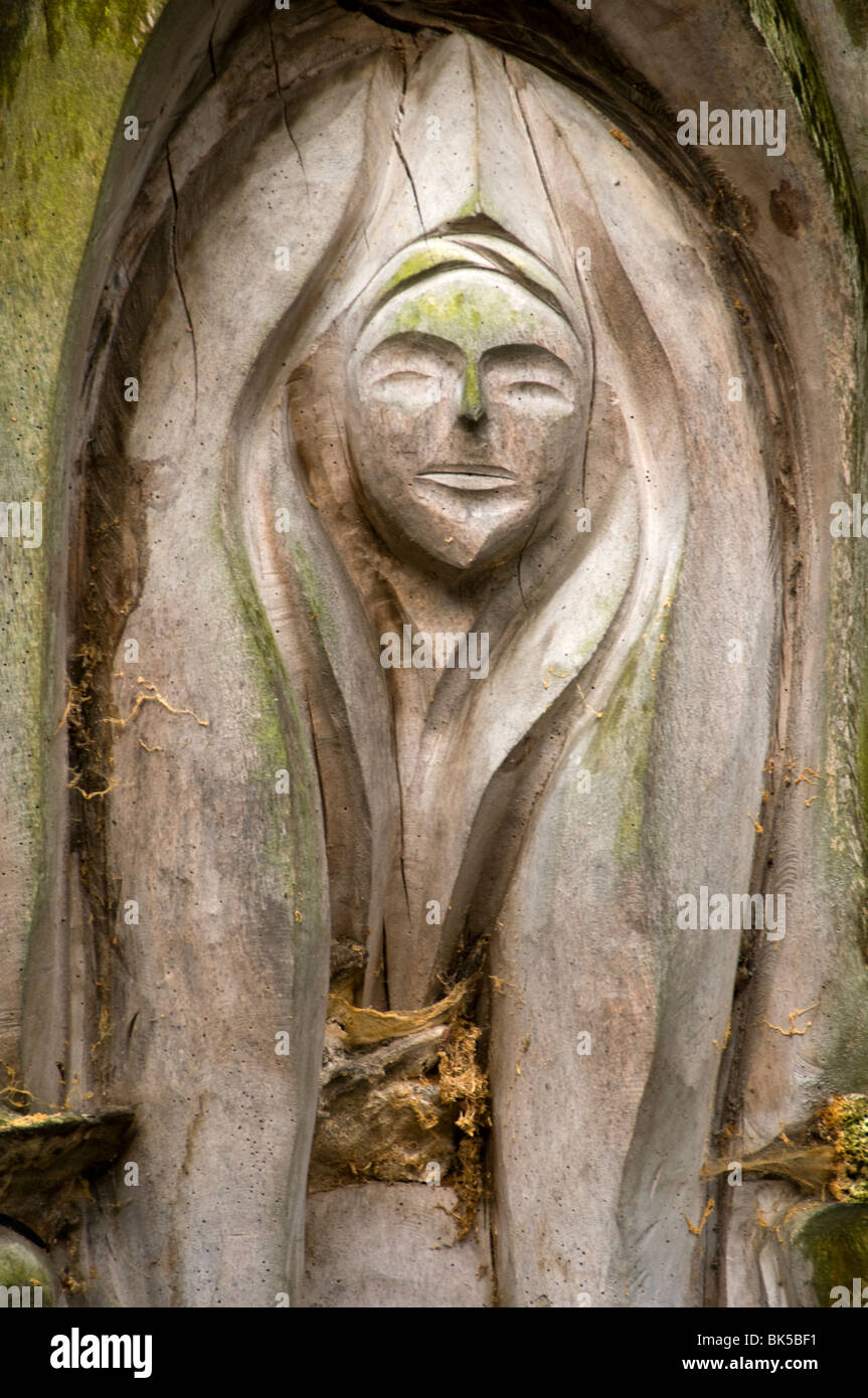 Wood carving in an old tree trunk, West Park, Long Eaton, Derbyshire, England, UK - Stock Image
