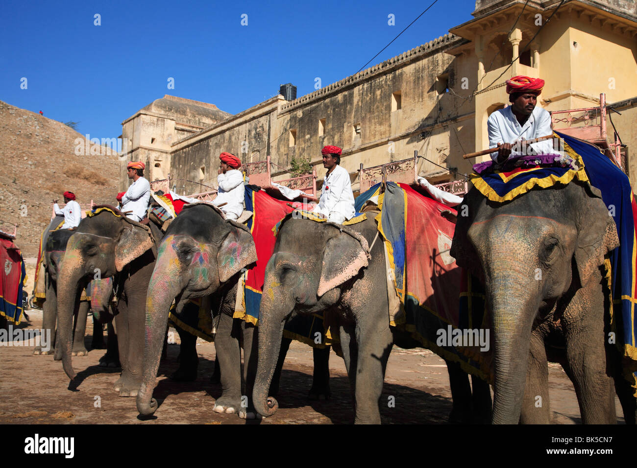 Mahouts and elephants, Amber Fort Palace, Jaipur, Rajasthan, India, Asia - Stock Image