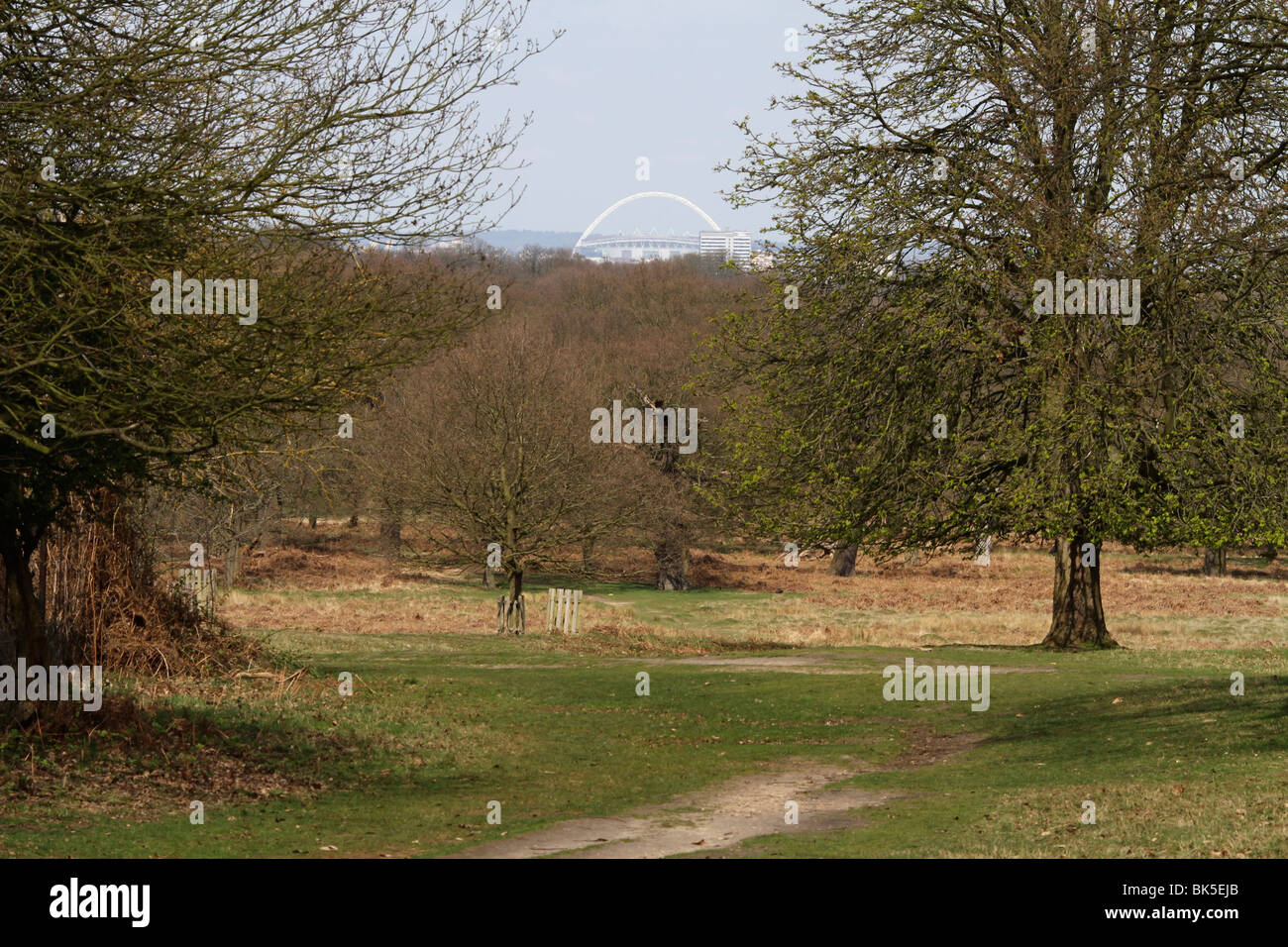View of Wembley Stadium arch from Richmond Park in London, Surrey, England - Stock Image