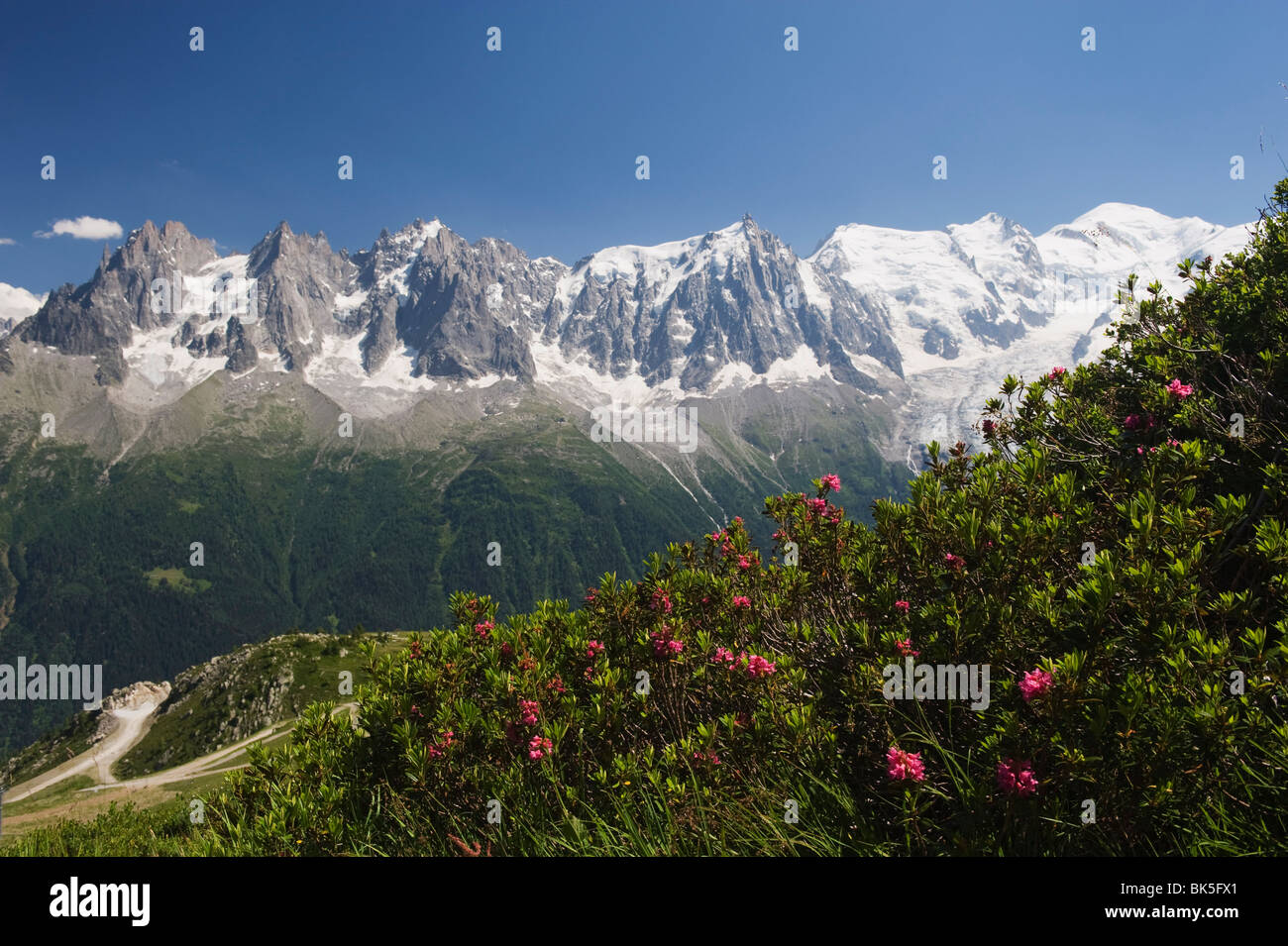 Mont Blanc and Chamonix Valley, Rhone Alps, France, Europe - Stock Image