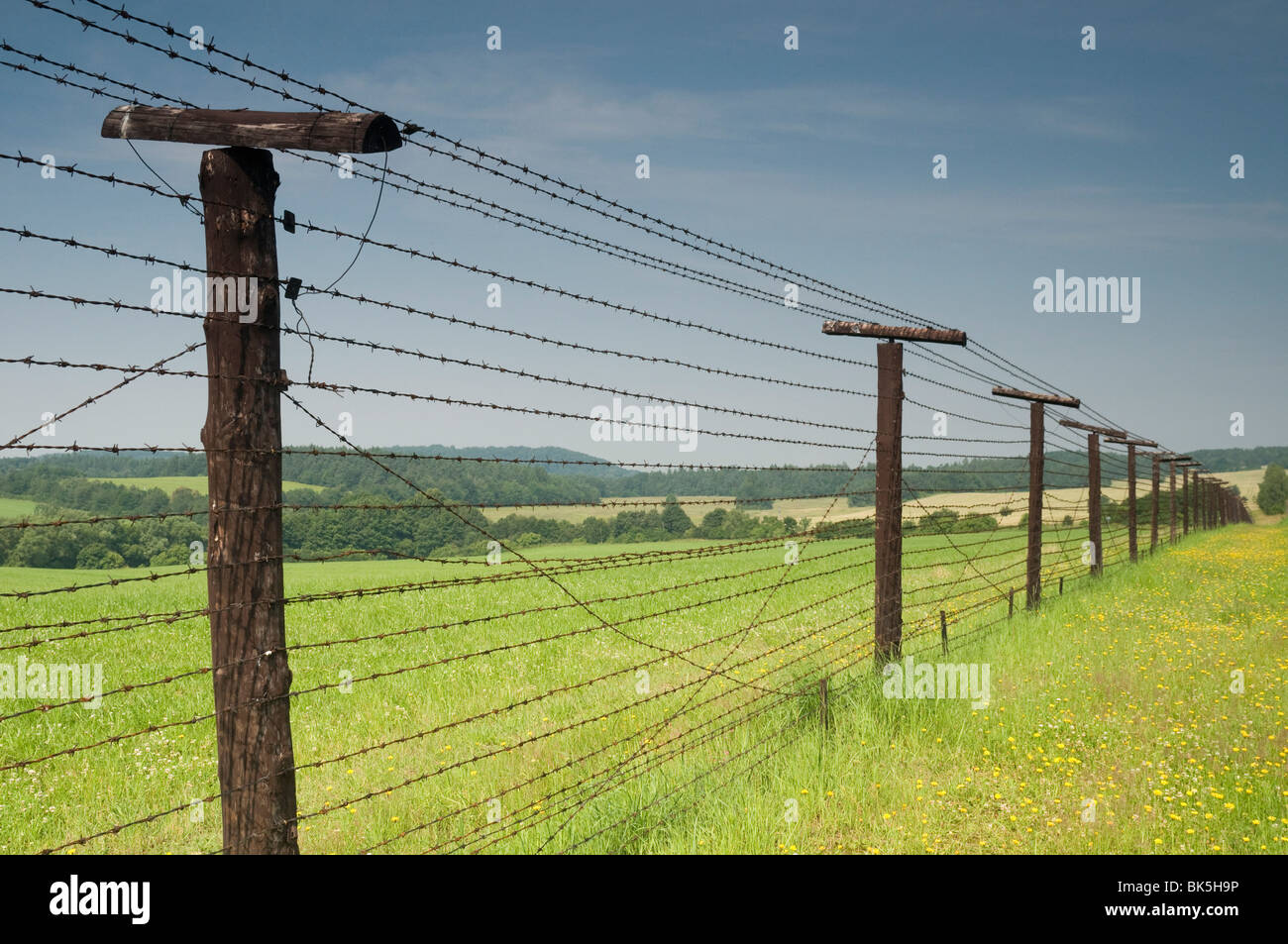 Stainless Steel Barbed Wire Iron Curtain - WIRE Center •