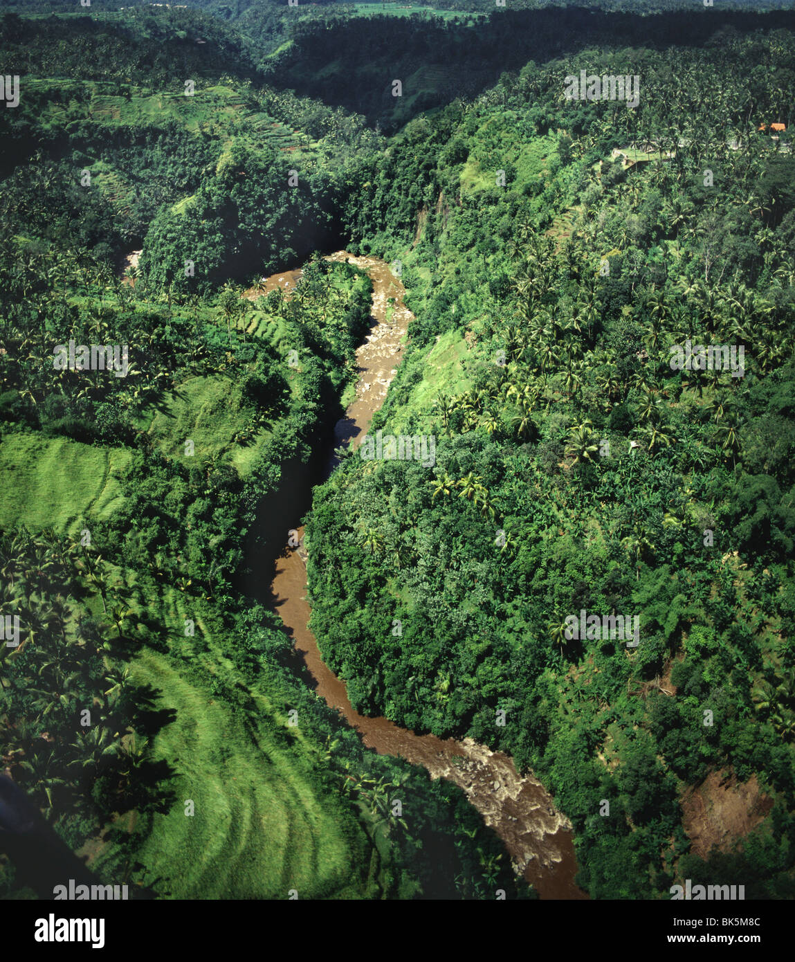 Sayan gorge, Ubud, Bali, Indonesia, Southeast Asia, Asia - Stock Image