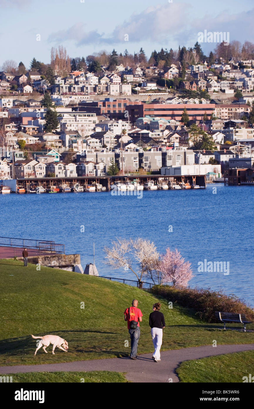 Residential houses on Lake Union from Gas Works Park, Seattle, Washington State, United States of America, North - Stock Image