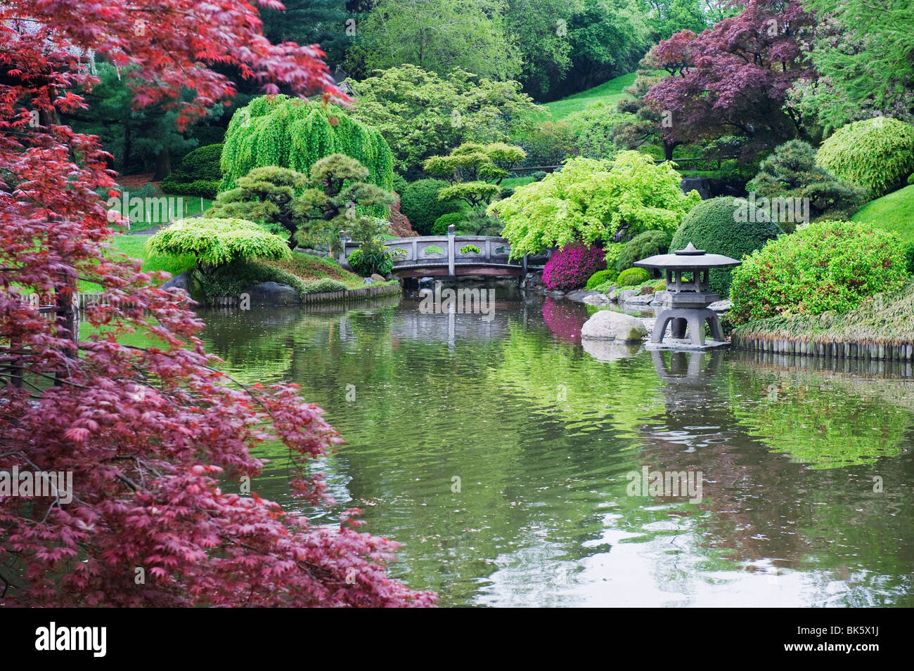 Incroyable Japanese garden, Brooklyn Botanical Garden, Brooklyn, New York GI-27