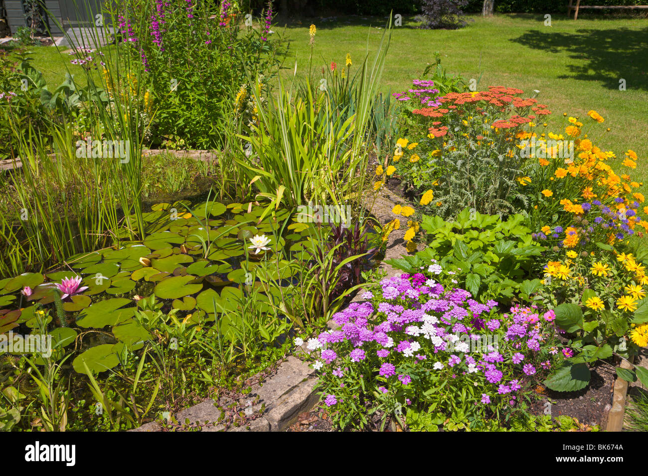 Perennial flower border around a garden pond, Wirral, England - Stock Image