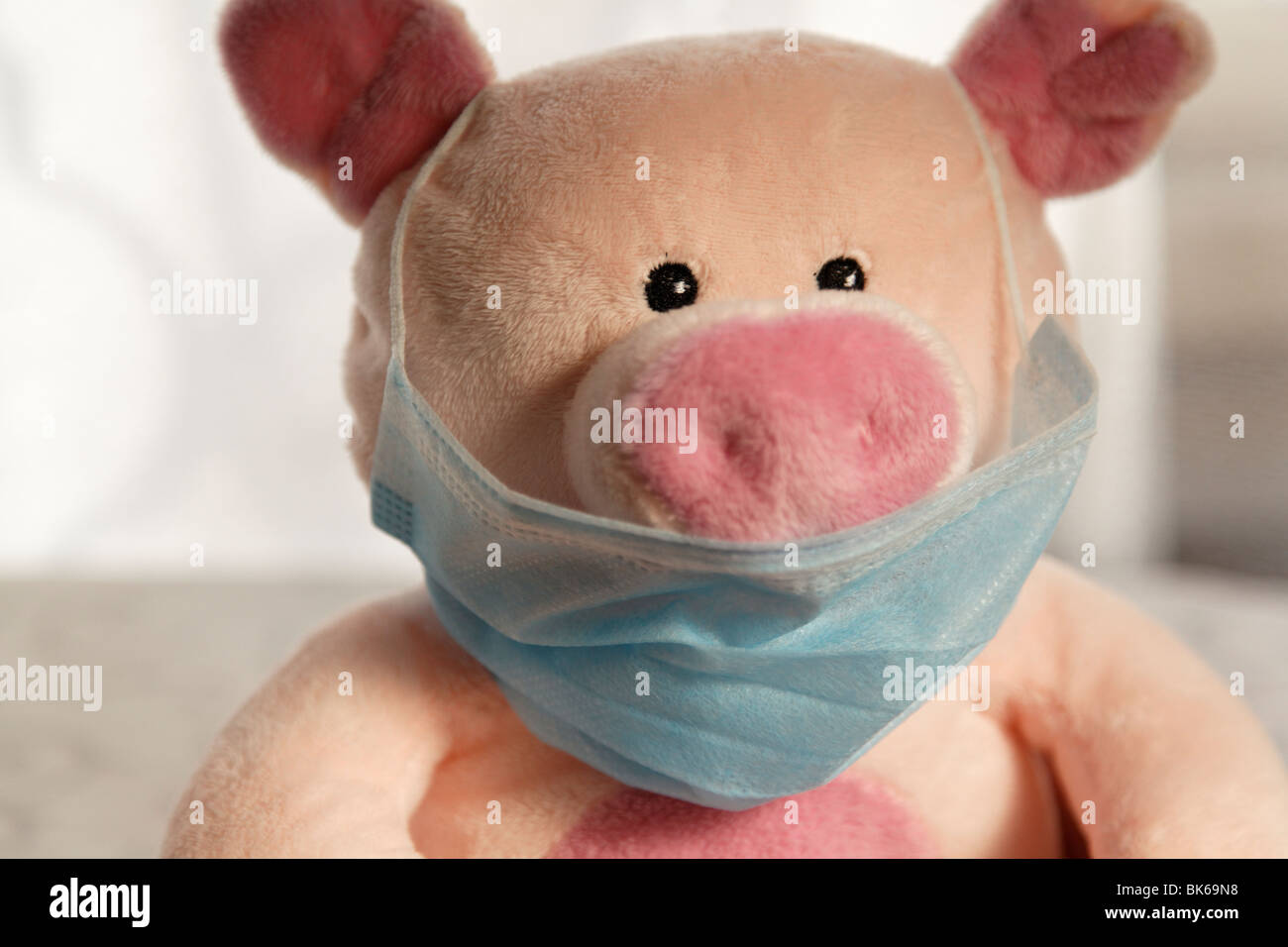 Toy pig with flu mask, head shot. - Stock Image