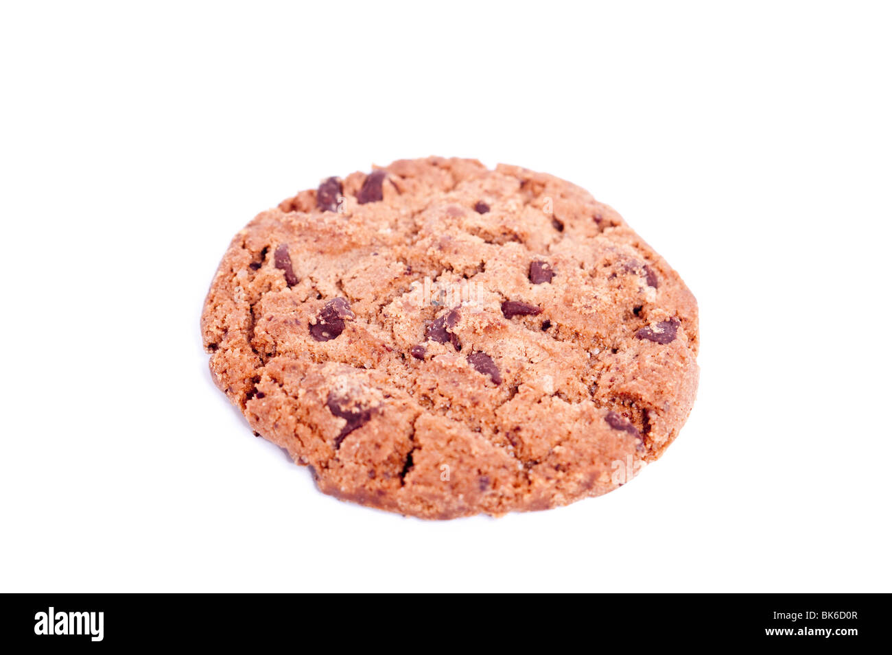 A double chocolate cookie biscuit on a white background - Stock Image