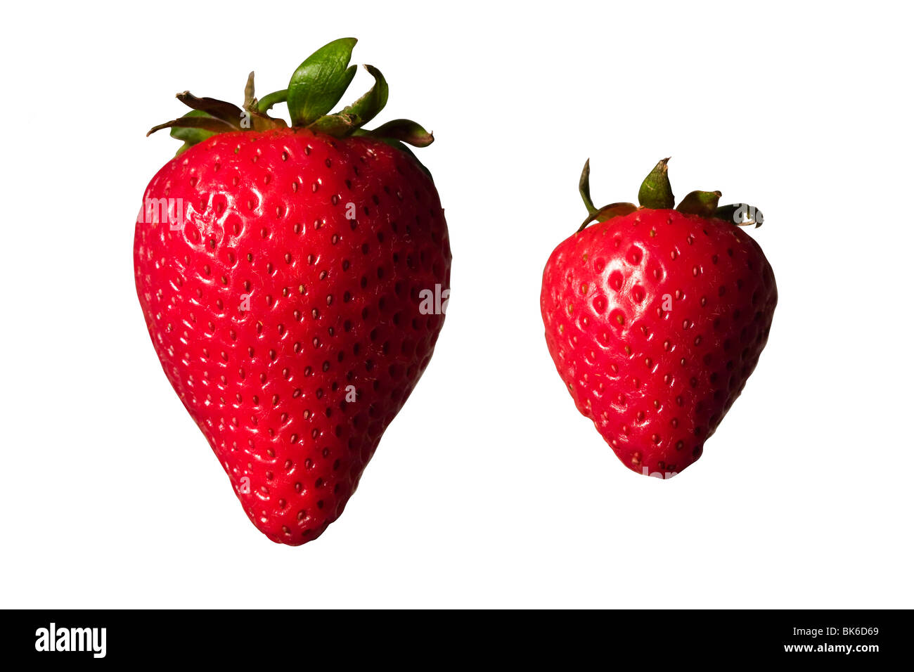 Big And Small Stock Photos & Big And Small Stock Images - Alamy