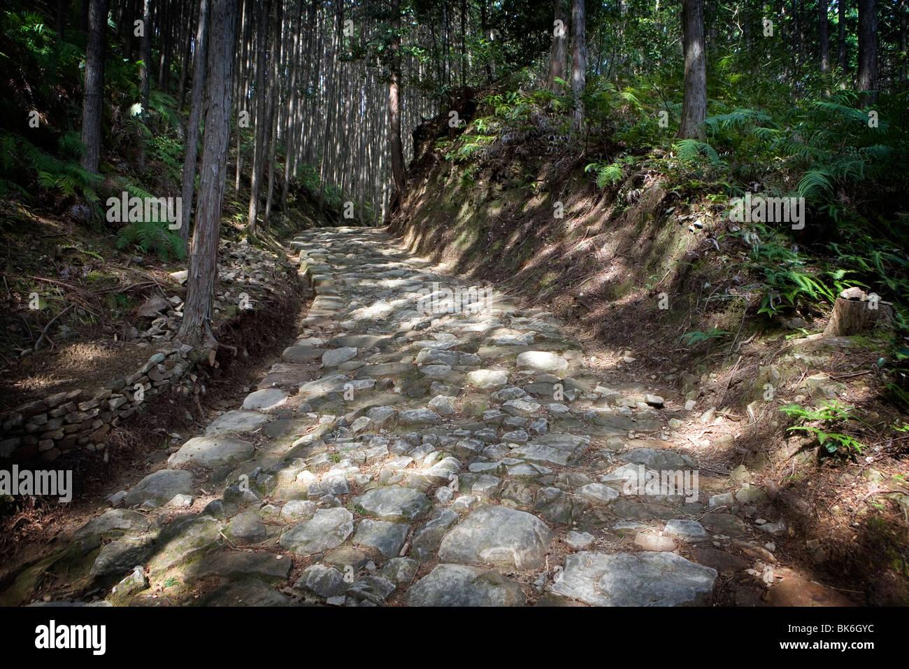Kumano Kodo pilgrimage route - Stock Image