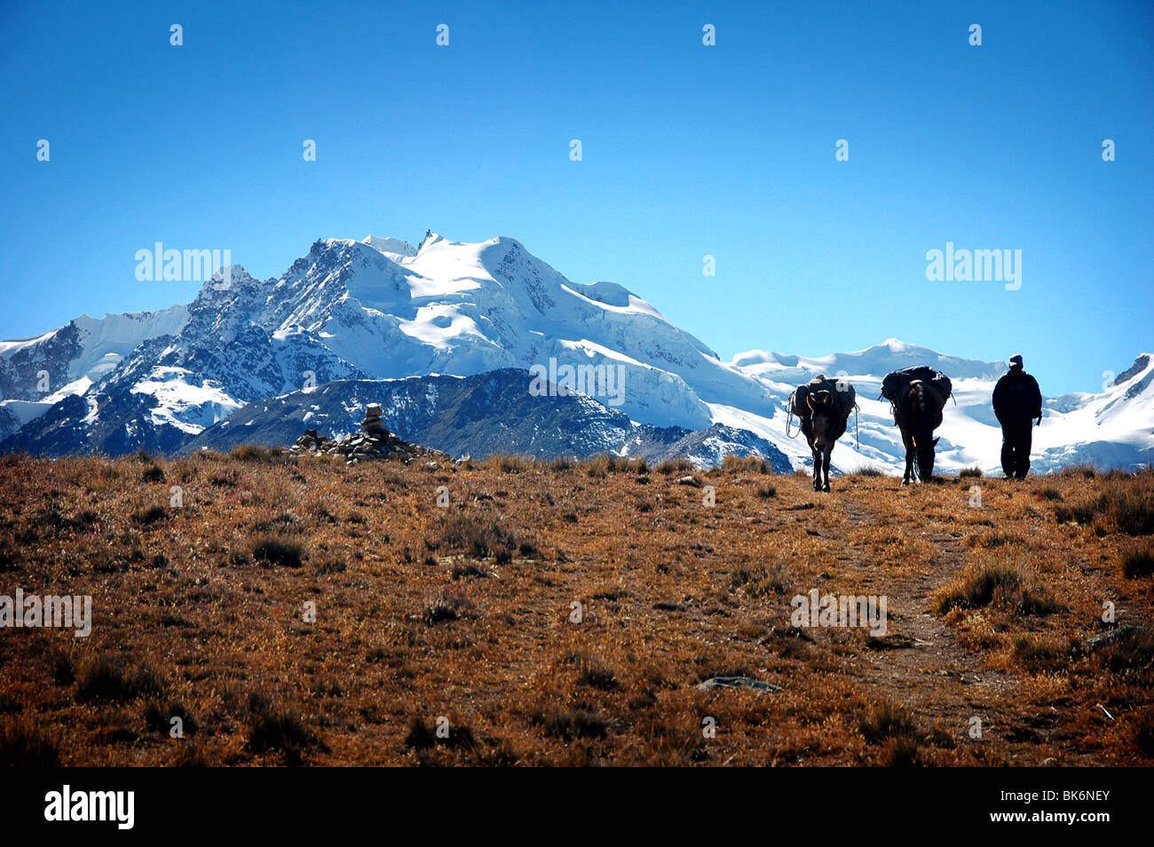 Cordillera Real, Bolivia Stock Photo
