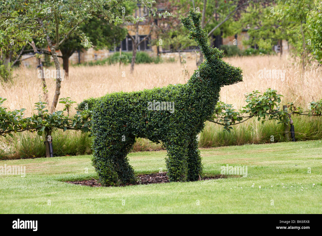 Topiary Tree Bush Cut In The Shape Of A Reindeer Stock Photo Alamy