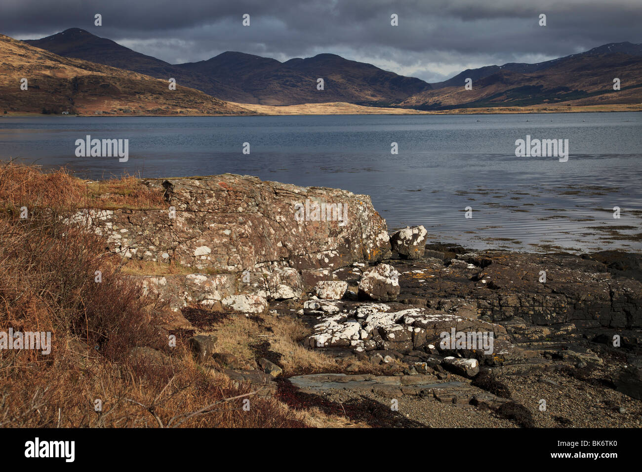 Spring at Loch Beg on the Isle of Mull, Scotland - Stock Image