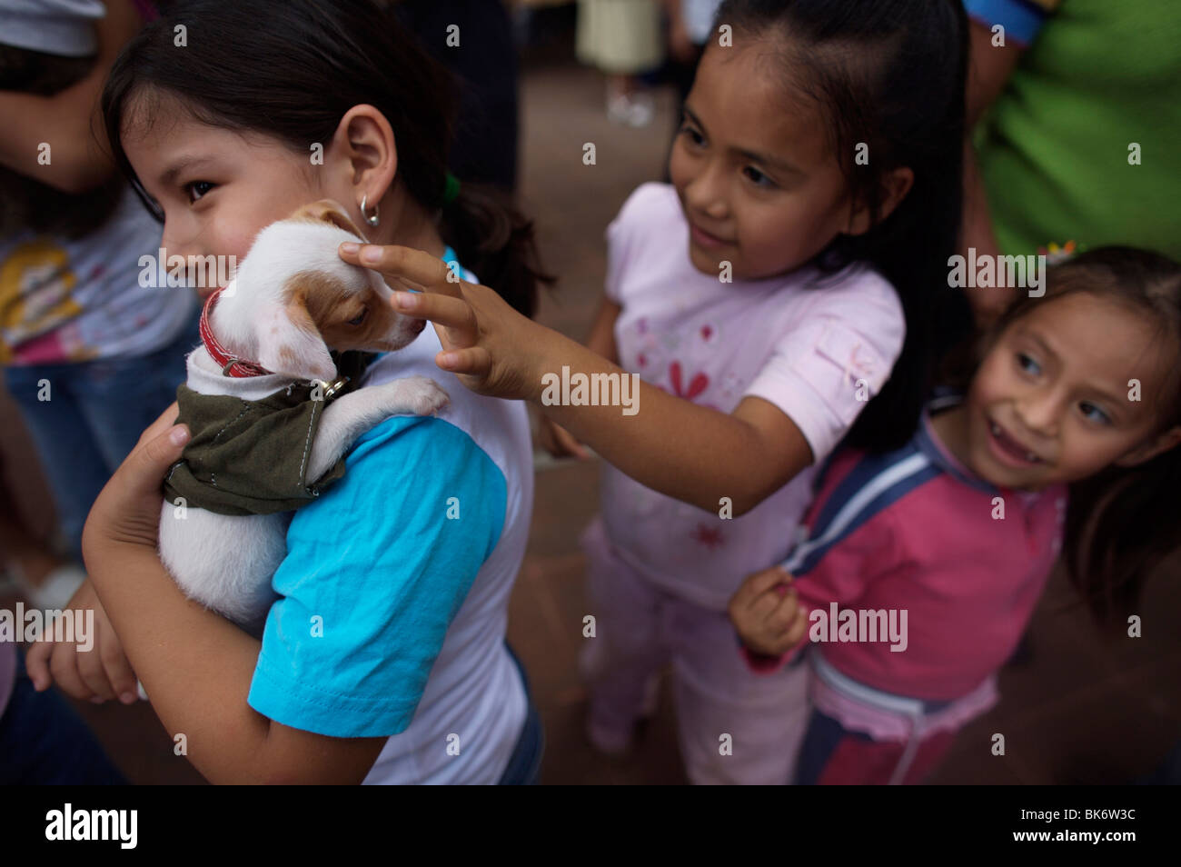 Girls play with a puppy during the Blessing of the Animals celebration in Oaxaca, Mexico - Stock Image