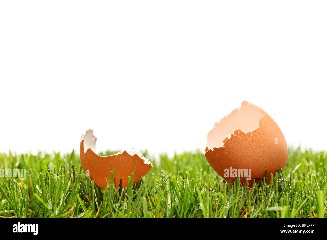 A view of a broken egg on a green grass - Stock Image
