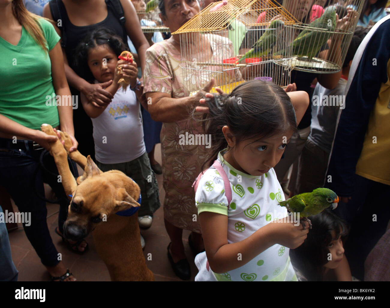 People hold their pets as they attend the Blessing of the Animals celebration in Oaxaca, Mexico - Stock Image