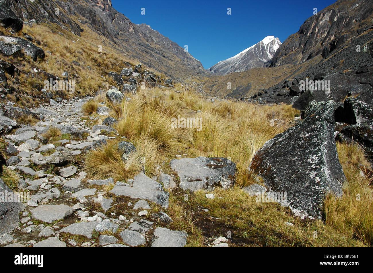 Cordillera Real, Bolivia - Stock Image