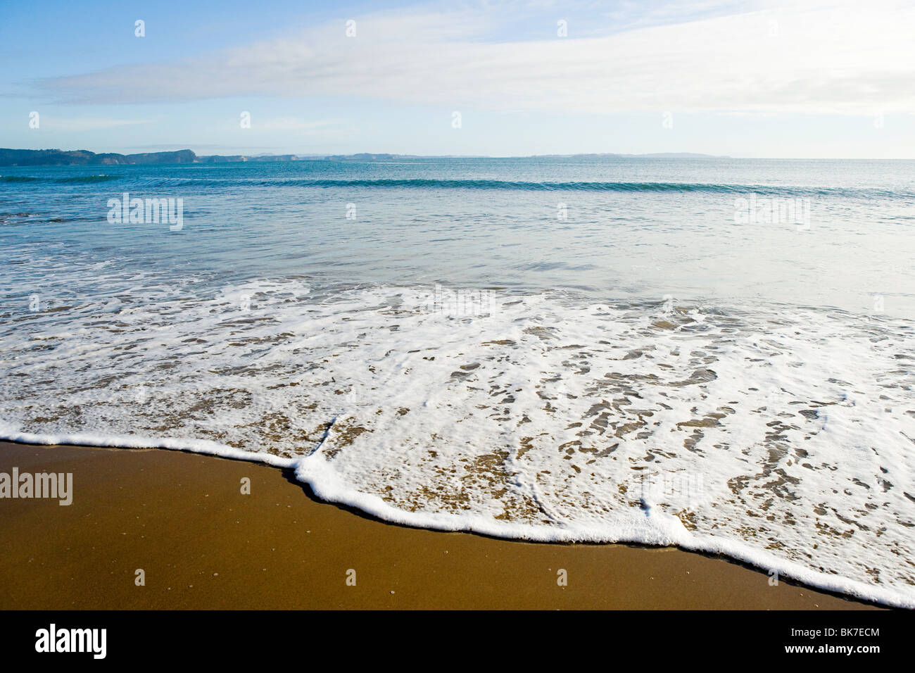 Auckland , shore at Hauraki Gulf - Stock Image