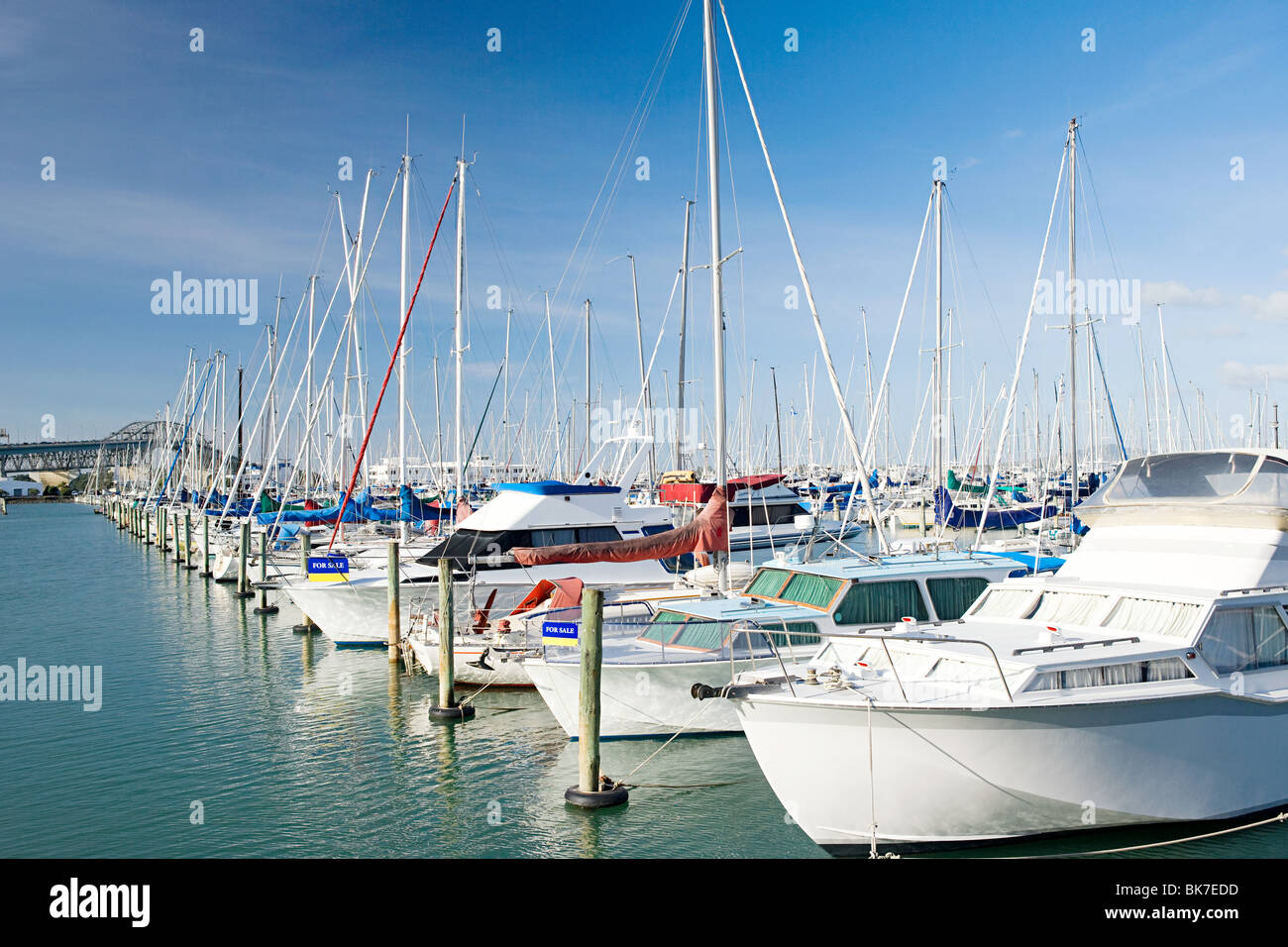 Westhaven Marina, Auckland - Stock Image