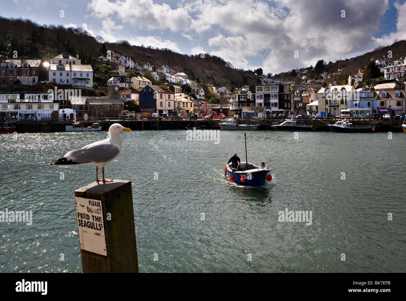 The passenger ferry crossing the River Looe in Cornwall.  Photo by Gordon Scammell - Stock Image
