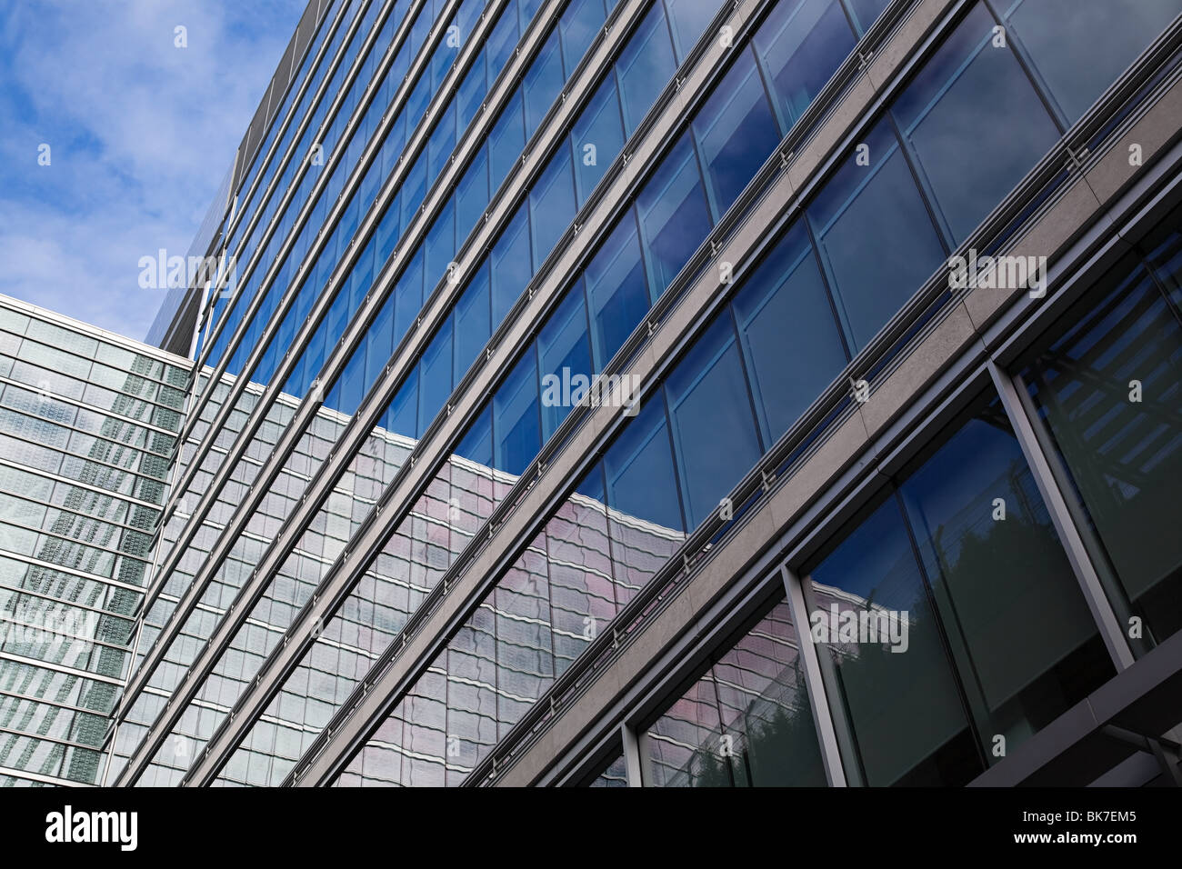 Windows of office building - Stock Image