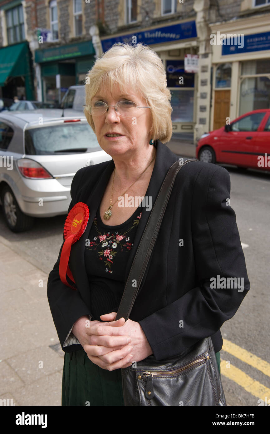 Alana Davies Labour Party candidate in the Vale of Glamorgan constituency pictured campaigning during the 2010 General - Stock Image