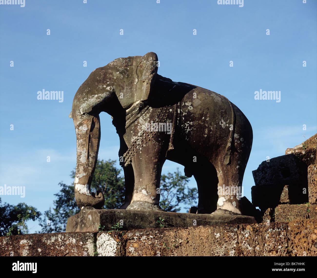 Elephant dating site