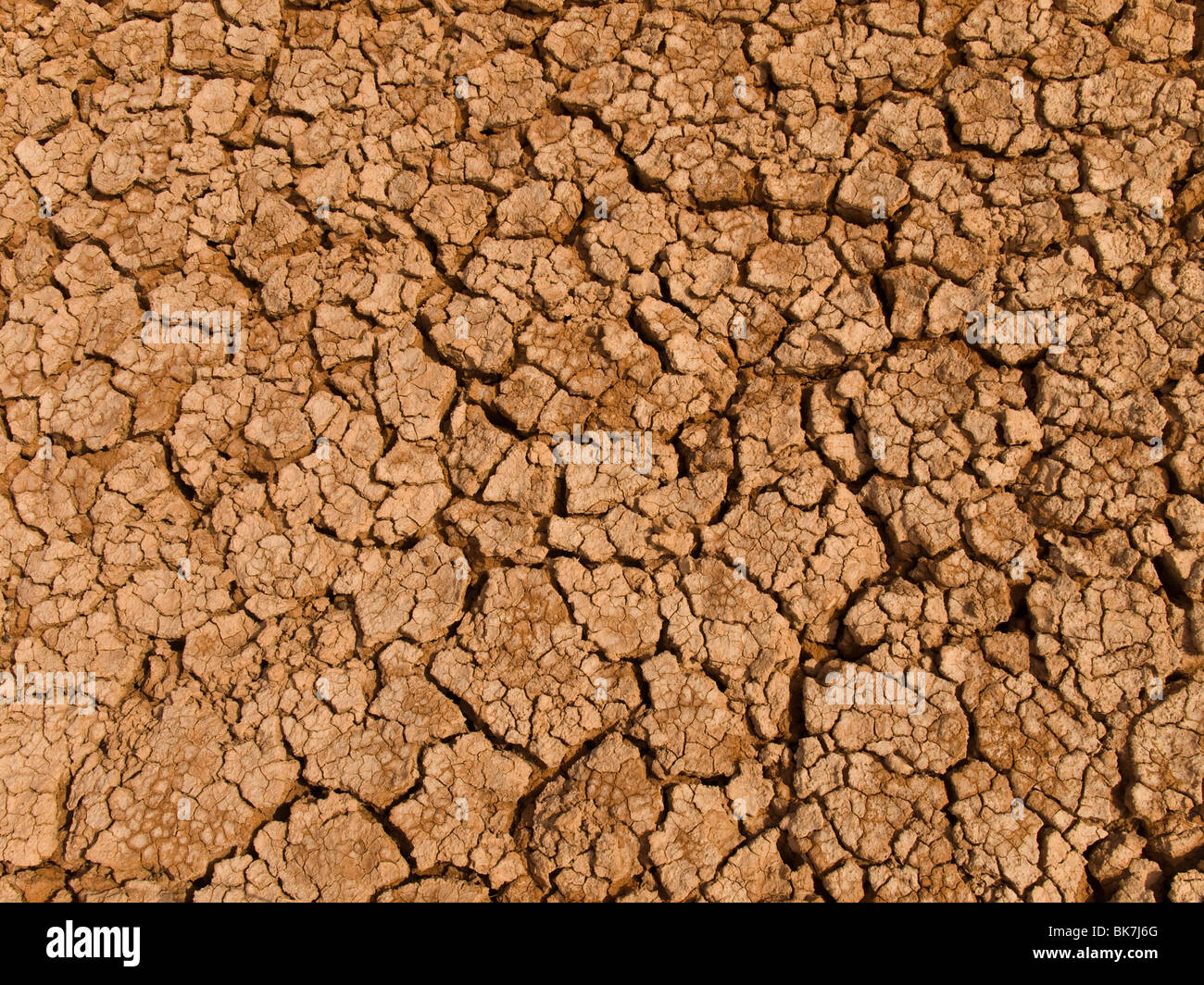 A baked earth soil after a long drought. - Stock Image