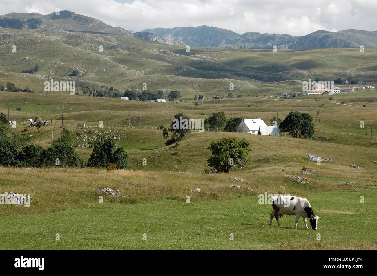 A view of the countryside and mountains, in the village of Trsa, in the Durmitor region of Montenegro. Stock Photo