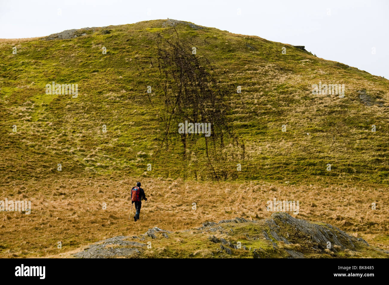Environmental damage caused by off-road bikers, in the Moelwyn hills, Snowdonia, North Wales, UK - Stock Image