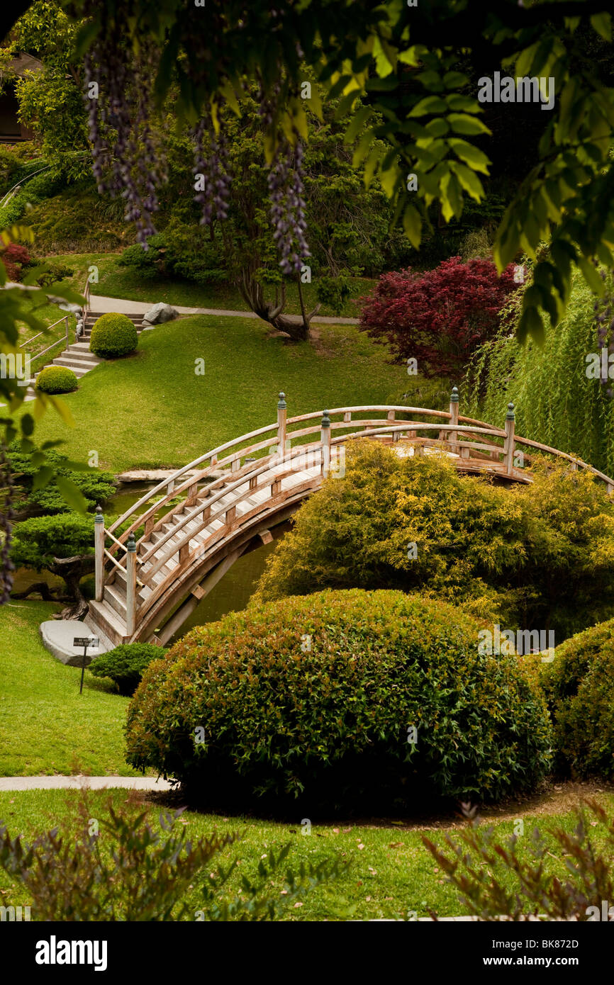 Huntington Botanical Garden Stock Photos & Huntington Botanical ...