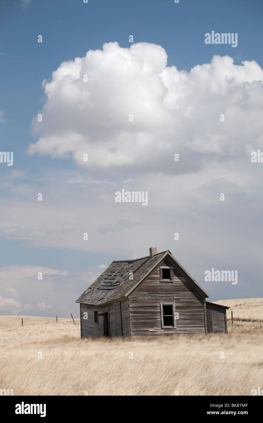 Old Wooden House In Field - Stock Image