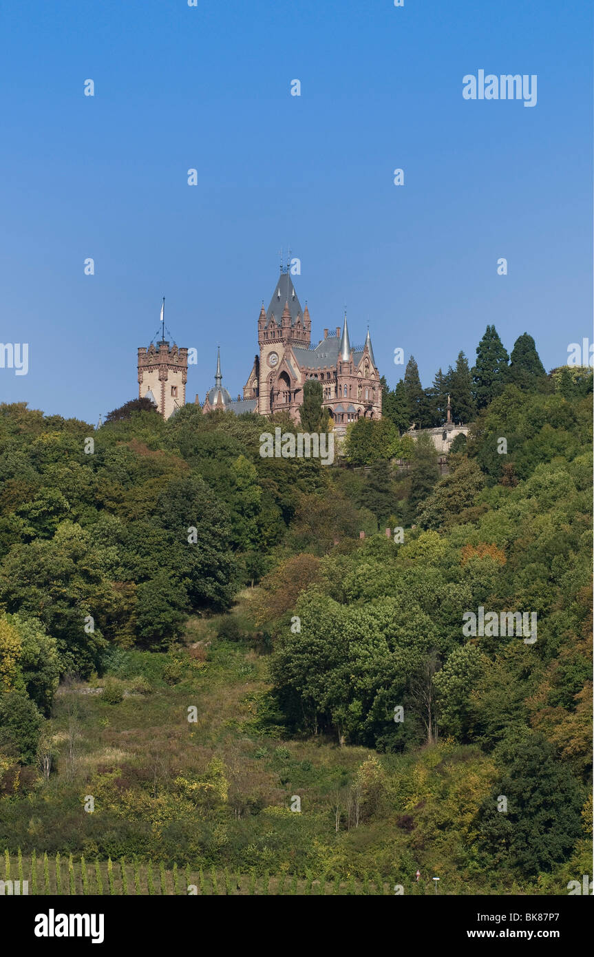 Freshly renovated Schloss Drachenburg Castle on Drachenfels, Dragon's Rock, Koenigswinter, North Rhine-Westphalia, - Stock Image