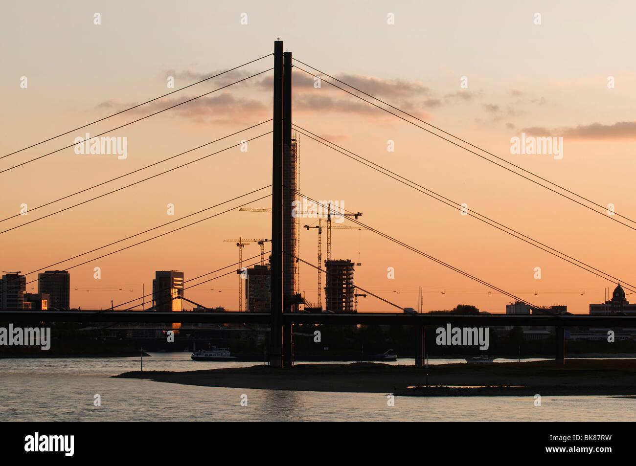 Rheinkniebruecke bridge in the evening, backlighting, Dusseldorf, North Rhine-Westphalia, Germany, Europe - Stock Image