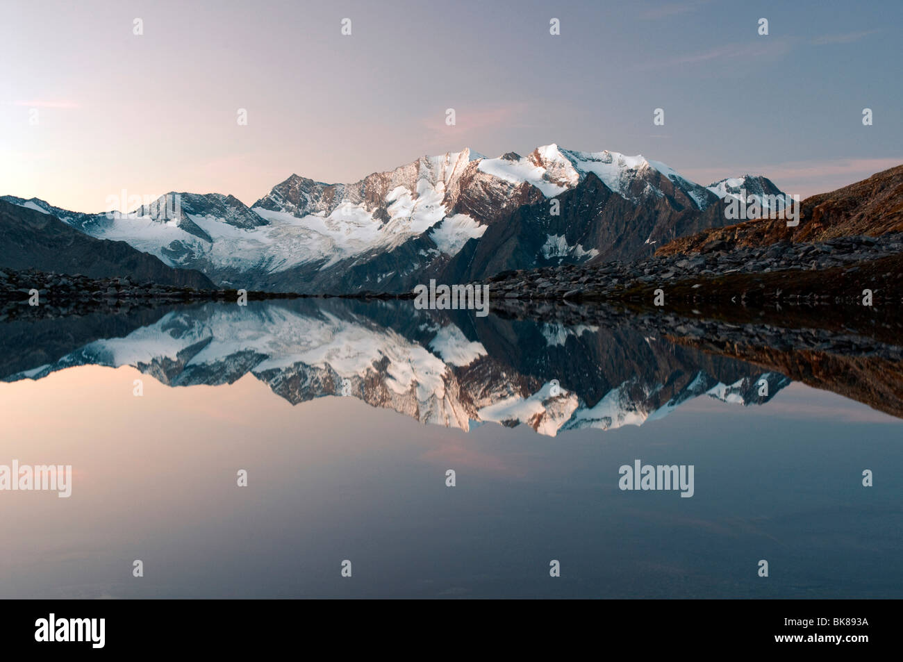 Hochfeiler Mountain reflected in Friesenbergrsee lake in Hochgebirgs Nature Park in the Zillertal Alps, Austria, Stock Photo