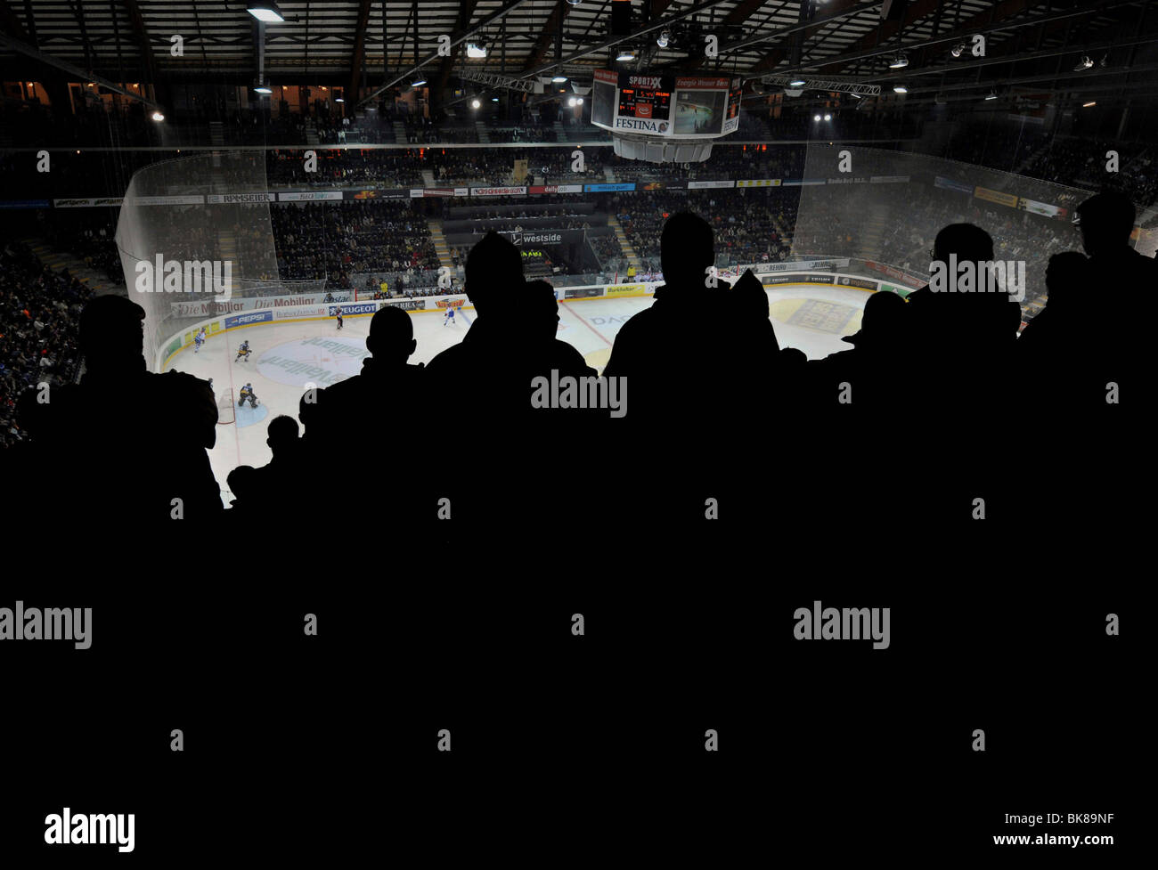 Spectators in the PostFinance Arena of SC Bern, Switzerland, Europe - Stock Image