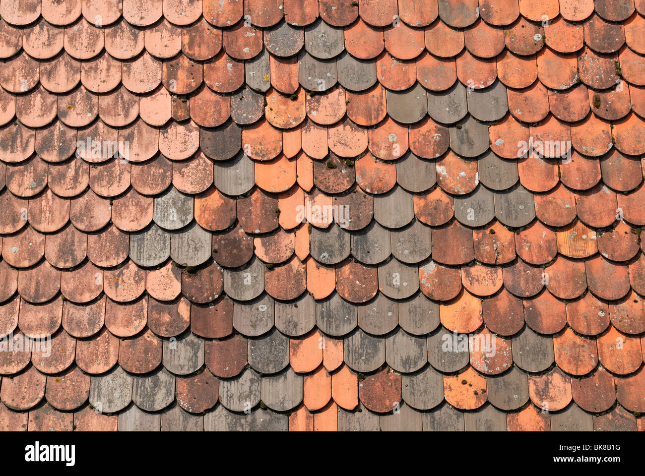 Beaver tail-roofing, detail with new tiles, Rothenburg ob der Tauber, Bavaria, Germany, Europe Stock Photo