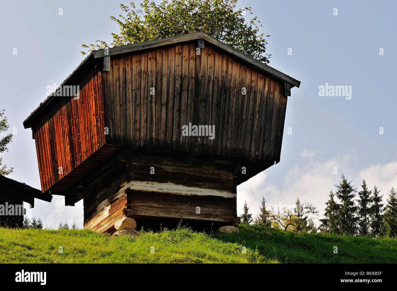 Granary from Ramsau, Glentleiten open-air museum, Bavaria, Germany, Europe - Stock Image