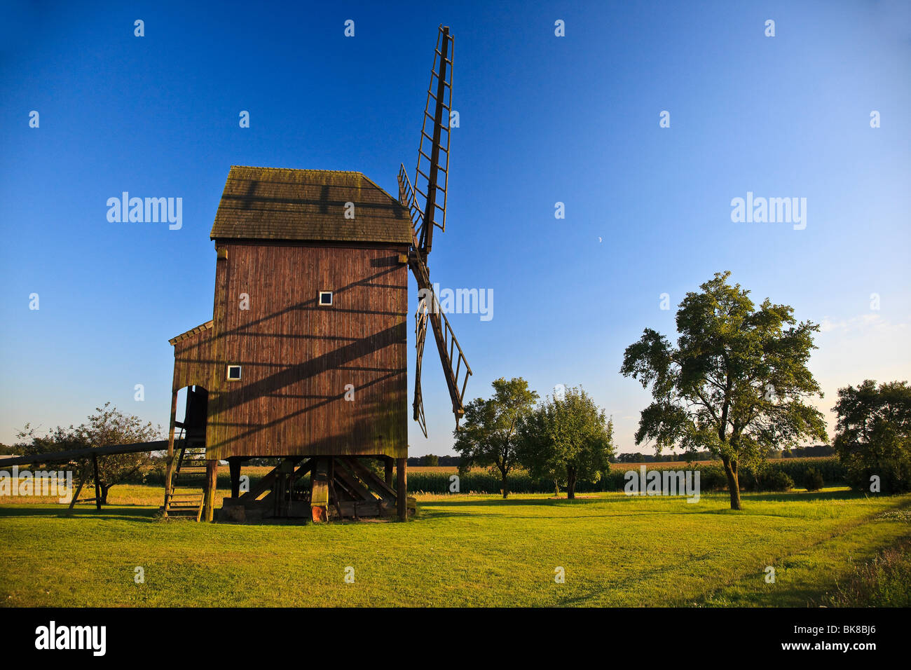 Windmill in the evening sun in Altbelgern on the Elbe river, Brandenburg, Germany, Europe - Stock Image
