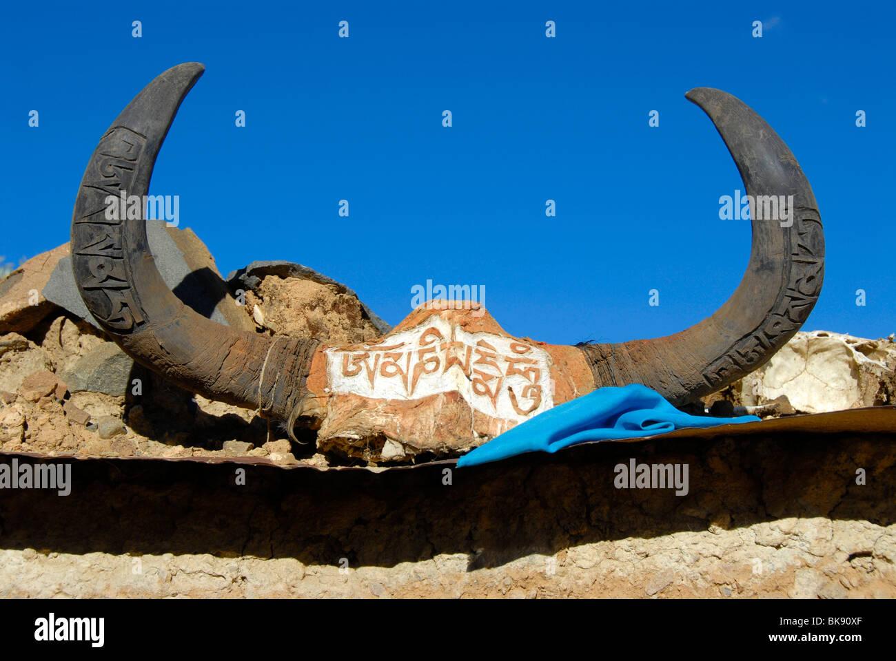 Tibetan Buddhism, horns of a Yak decorated with Tibetan scripture, sacred text, Om Mani Padme Hum, Tashilhunpo monastery, - Stock Image