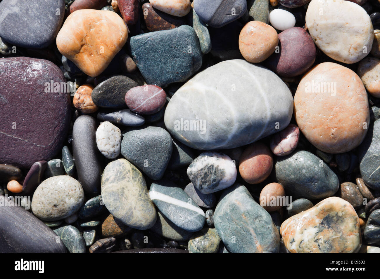 UK, Europe. Close-up of a variety of smooth coloured pebbles on a beach in a Geopark - Stock Image