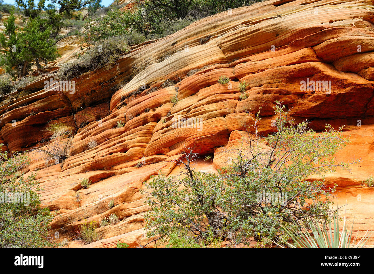 Cliff on the way to Observation Point in Zion National Park, Utah, USA - Stock Image