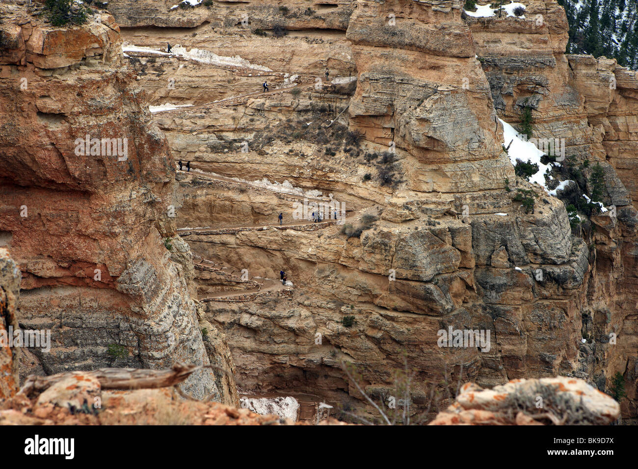 Hikers on the Kaibab Trail in the Grand Canyon National Park Arizona USA - Stock Image