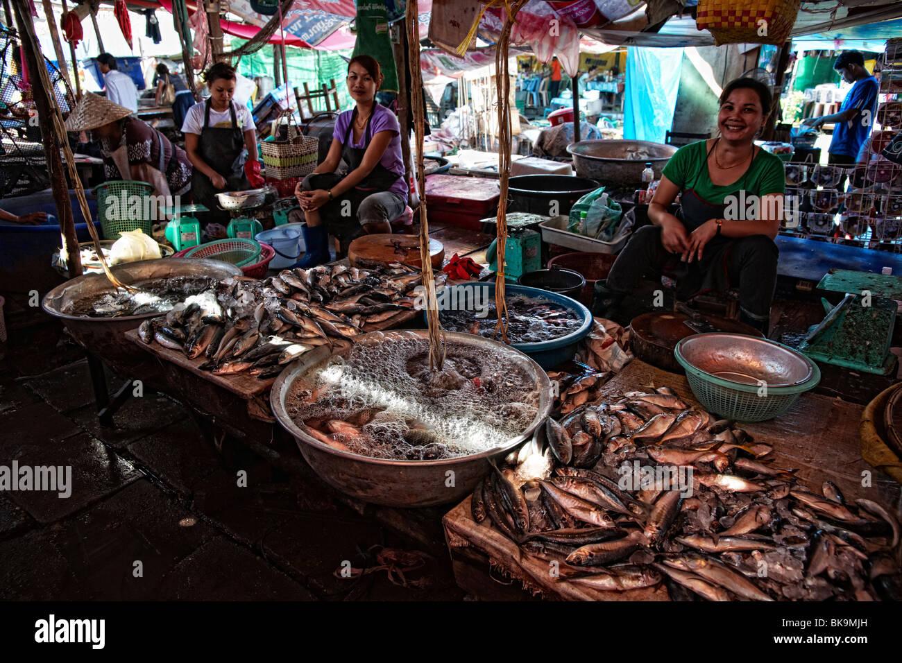 Women selling fish, food market, Vientiane, Laos - Stock Image