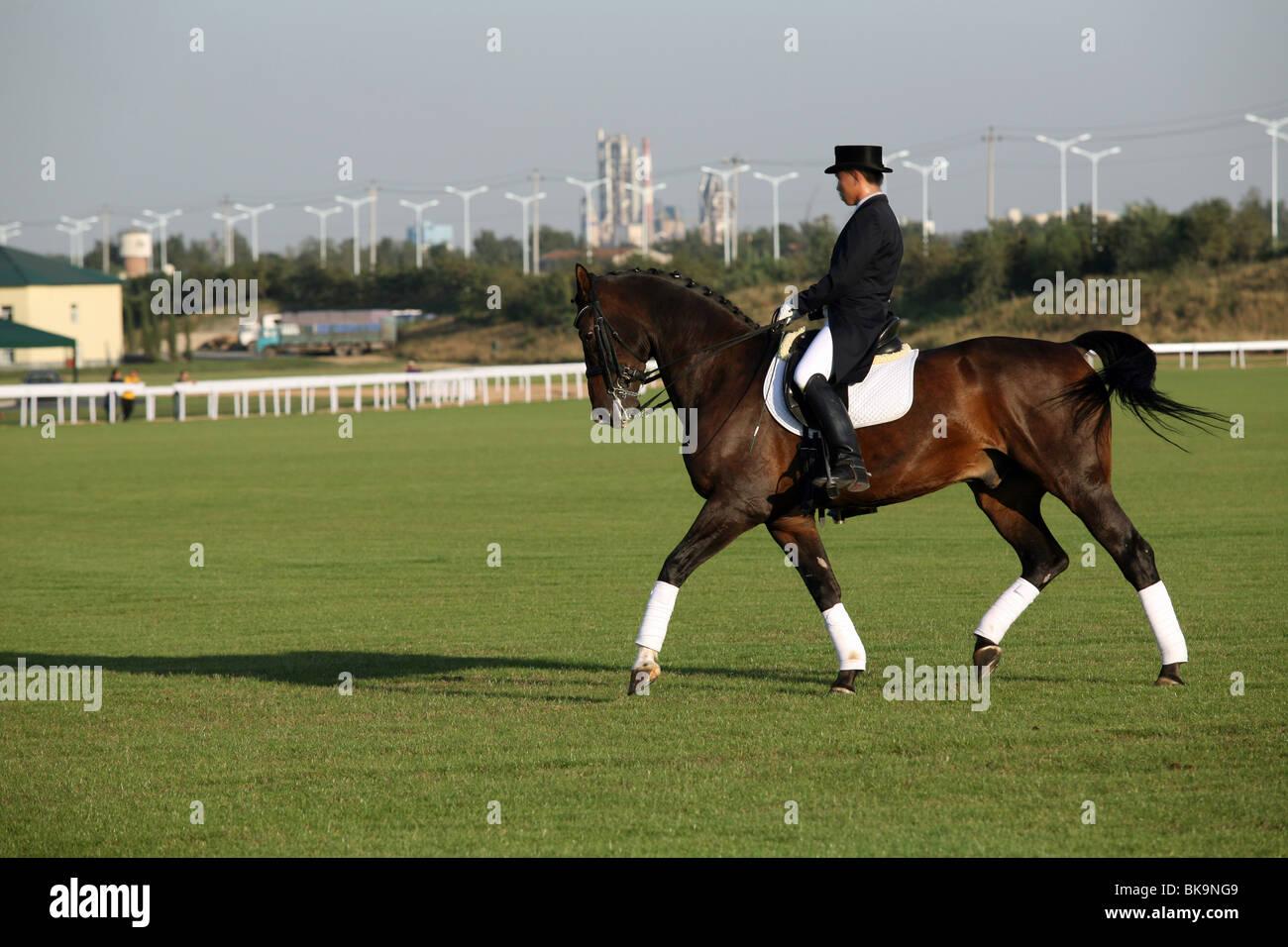 Horse racing,China - Stock Image