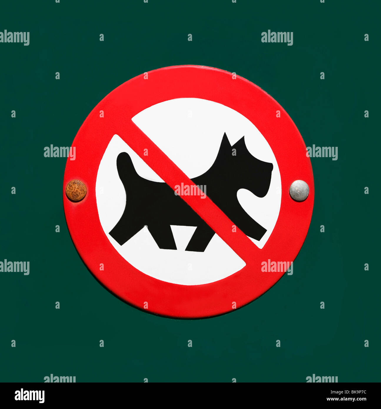 Enamelled sign: No dogs allowed, crossed out dog in a red circle - Stock Image