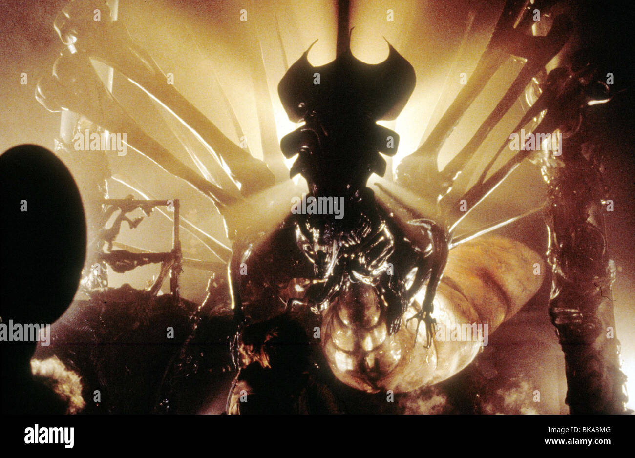 ALIENS -1986 - Stock Image