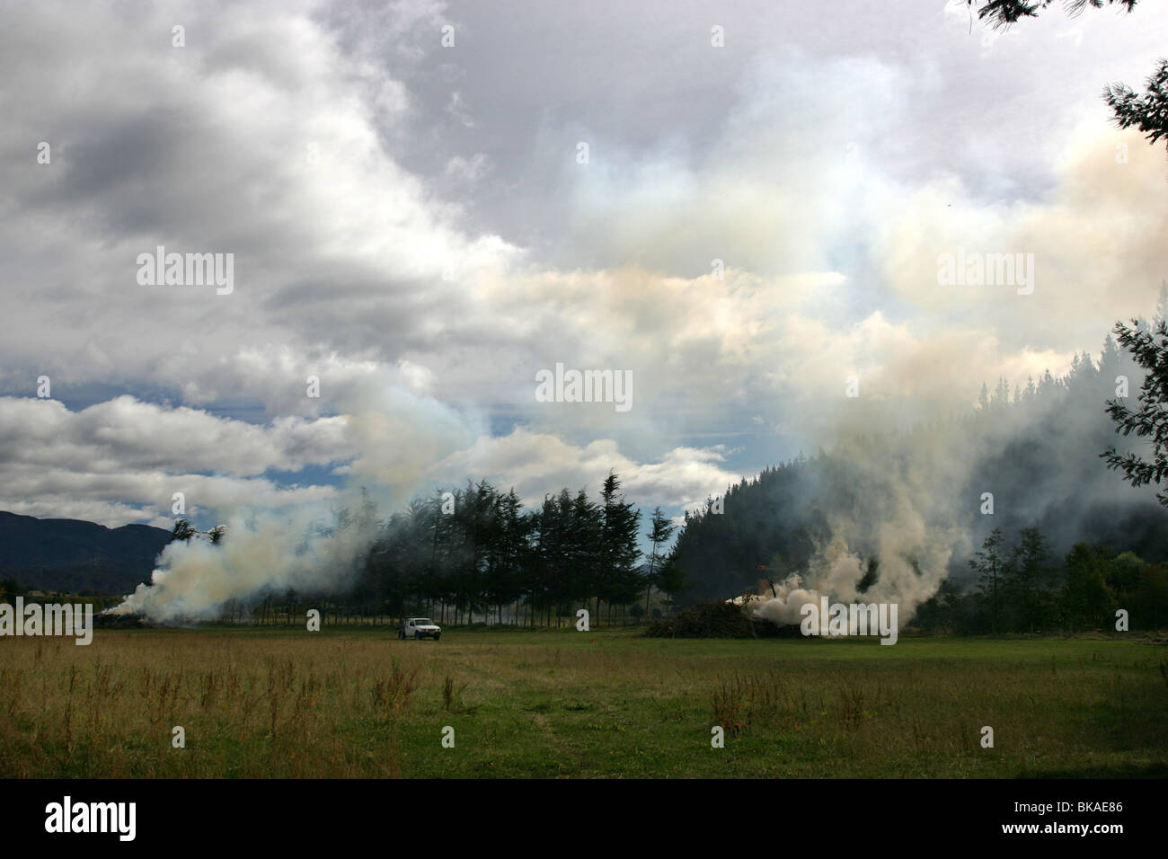 a farmer burns off foliage and branches in a field near Motueka, Nelson, New Zealand - Stock Image